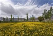 روستای ویست اصفهان