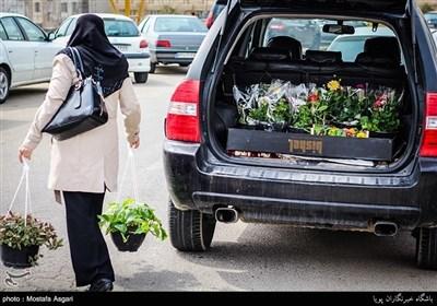 ایران میں نوروز کے موقع پر پھولوں کے بازار سج گئے