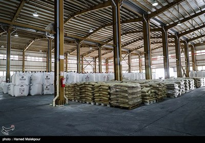 Criminal Network Disrupting Petrochemical Market Busted in Iran