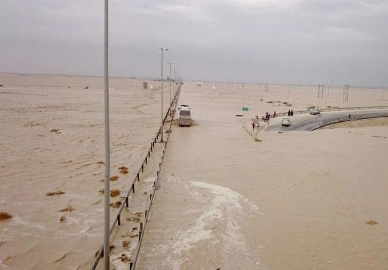 سیل و تگرگ 363 میلیارد ریال به اراضی کشاورزی استان بوشهر خسارت وارد کرد
