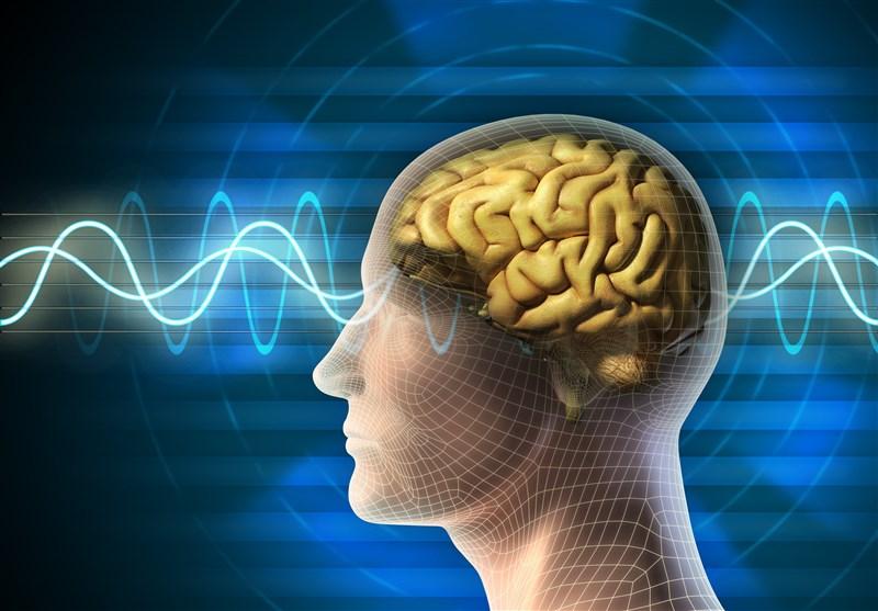 امواج - مغز - فرکانس