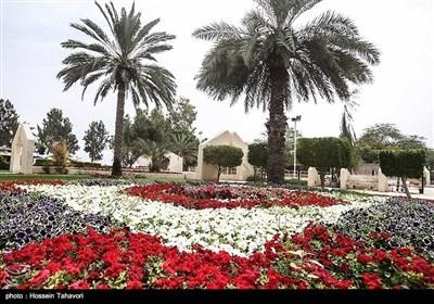 ایران کے جزیرہ کیش میں موسم بہار کی آمد