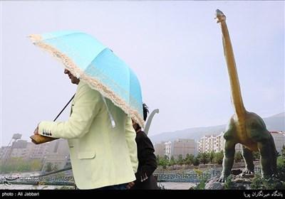 طهران تغتسل بأمطار ربیعیة