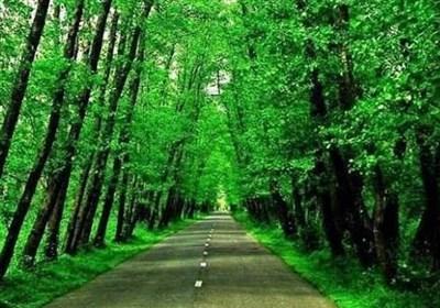 از کویر جن ریگ تا جنگل گیسوم
