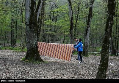مسافران نوروزی در پارک جنگلی النگدره - گرگان