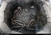 50 نمونه باستانی ایران مورد آزمایش DNA قرار میگیرد