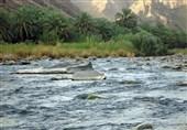 گشت نظارت بر برداشت از بستر رودخانه در اداره منابع آب شهرستان جم تشکیل میشود