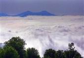 خبر خوب برای گردشگران جنگلدوست؛ آنتندهی تلفن همراه در جنگل ابر تقویت میشود
