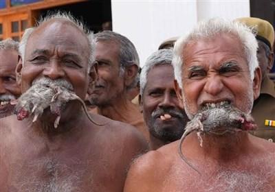 اعتراض مضحک و دردناک کشاورزان هندی به وضعیت اسفبار معیشتی