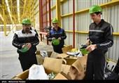 افتتاح کارخانه جات تولیدات فشرده چوبی - رشت