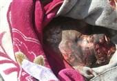 دست آلمان نیز با وجود صادرات تسلیحات به عربستان آغشته به خون غیرنظامیان یمنی است