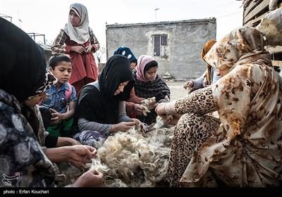 زنان روستا در فصل پشم چینی گوسفندان, پشم چیده شده توسط چوپانان اطراف قلعه را تمیز میکنند و در عوض آن شیر می گیرند.