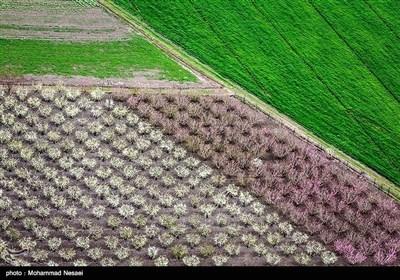 ایران کے شہر گرگان میں موسم بہار کی دستک