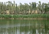 تشنگی 3 درصدی تالابهای جهان/ عطش روز افزون برای دریافت حقآبه زیست محیطی
