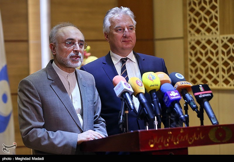 Iran, Hungary to Cooperate in Designing Small Nuclear Power Plants