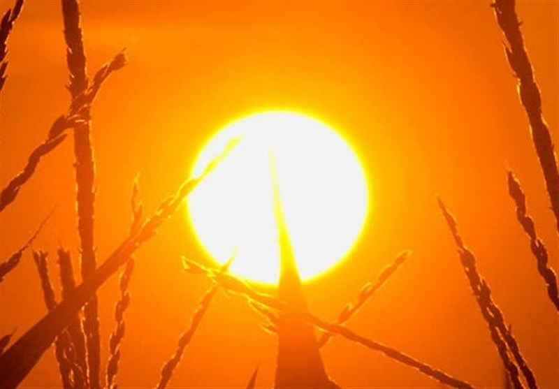 بھارت میں سورج سوا نیزے پر / شدید گرمی سے 37 افراد ہلاک