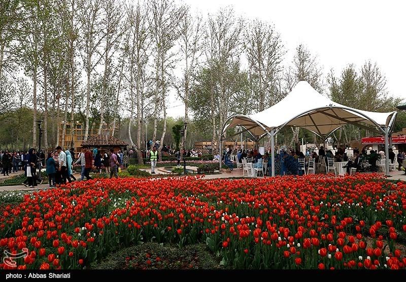 پنجمین جشنواره لاله ها -کرج