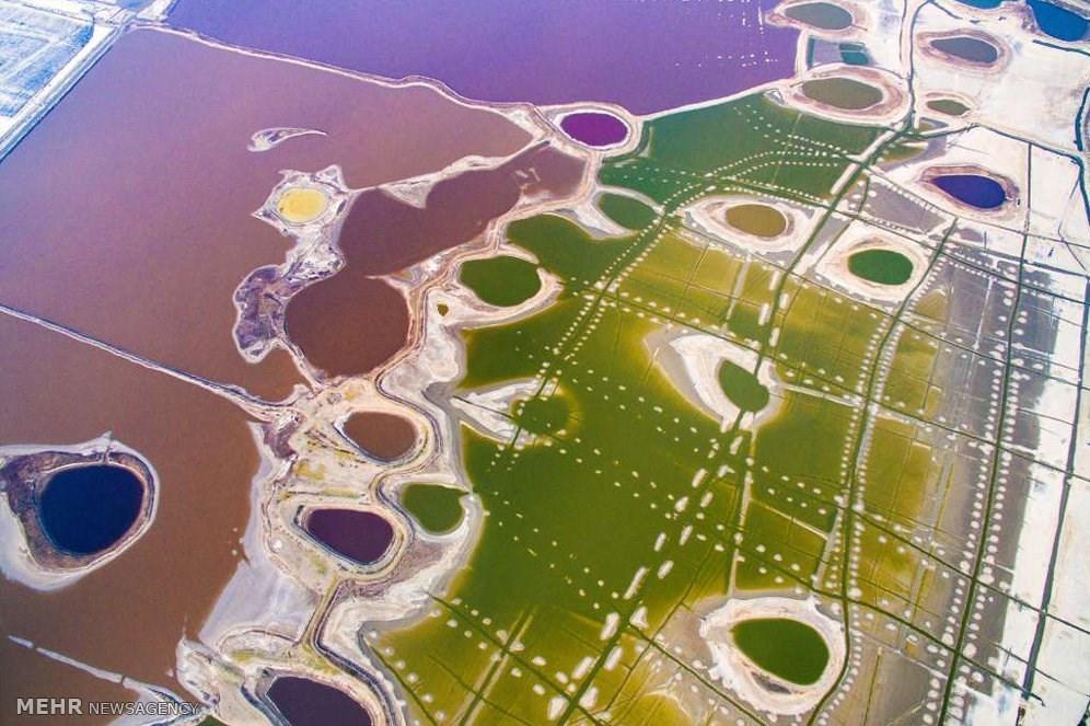 عکس/تغییر رنگ دریای مرده چین