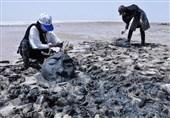 تالاب کجی نمکزار نهبندان نگاه ویژهای میطلبد