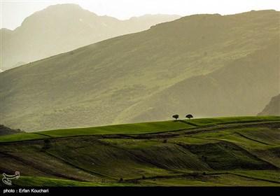 Kürdistan Doğası