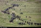 صعود بیست و پنج هزار نفری به ارتفاعات بازی دراز - کرمانشاه