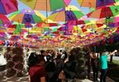 برپایی جشنواره گلها و لالهها در غربت موجهای سهمگین دریاچه ارومیه + فیلم