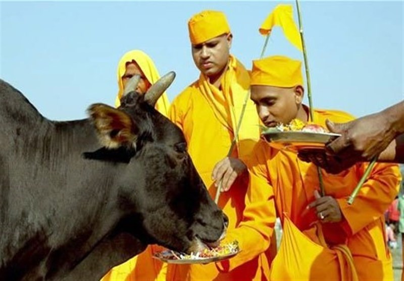 بھارت: گائے کا گوشت کھانے کے شبہے میں تشدد سے 1 مسلمان شہید، 3 زخمی