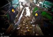 طرح بازیافت زباله با حضور سرمایهگذاران اوکراینی در گنبدکاووس اجرا میشود