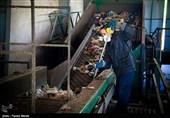 ماهانه 15 میلیارد ریال برای دفع زباله شهر بوشهر هزینه میشود