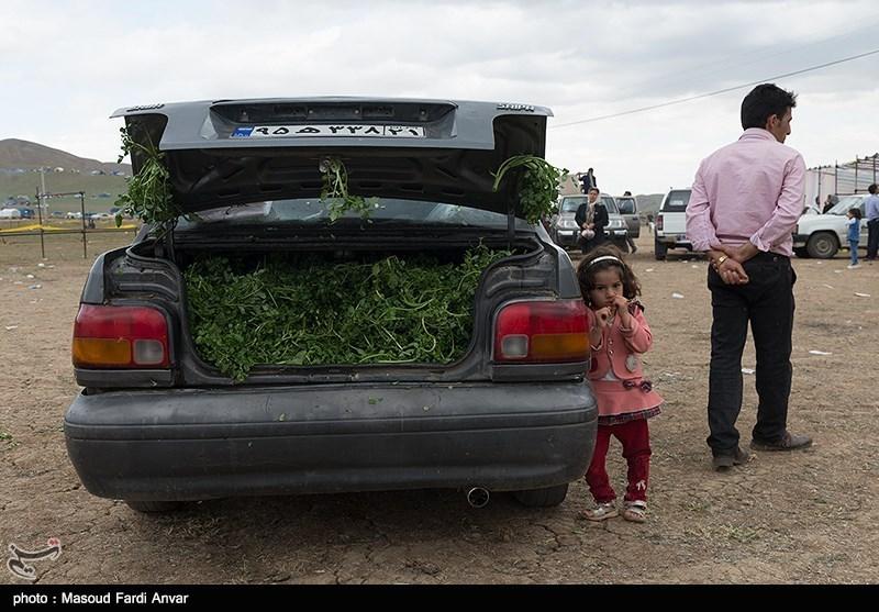 Tribal Communities Attend Festival in Iran