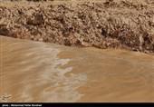 سیلاب و آبگرفتگی در برخی مناطق استان سمنان/نیروهای امدادی آمادگی لازم را داشته باشند