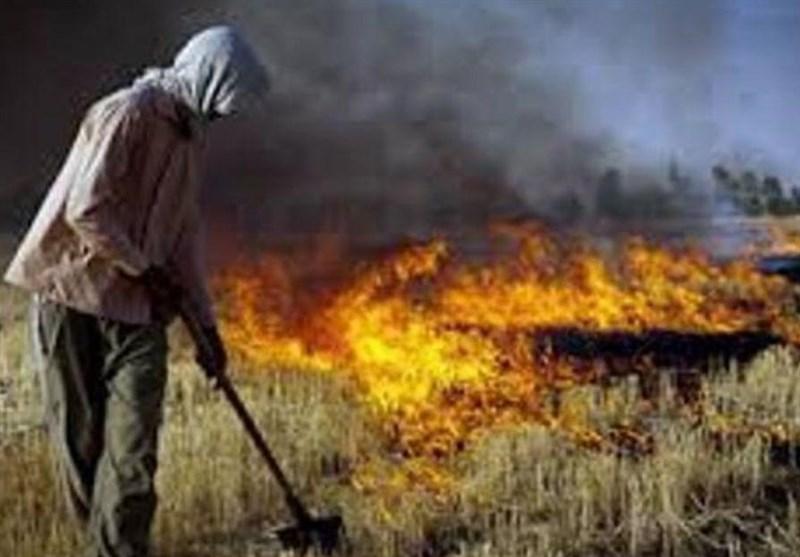 """""""آتشی"""" که بهداشت عمومی را تهدید میکند/تمهیدات قضایی برای آتش زدن مزارع در شوش"""
