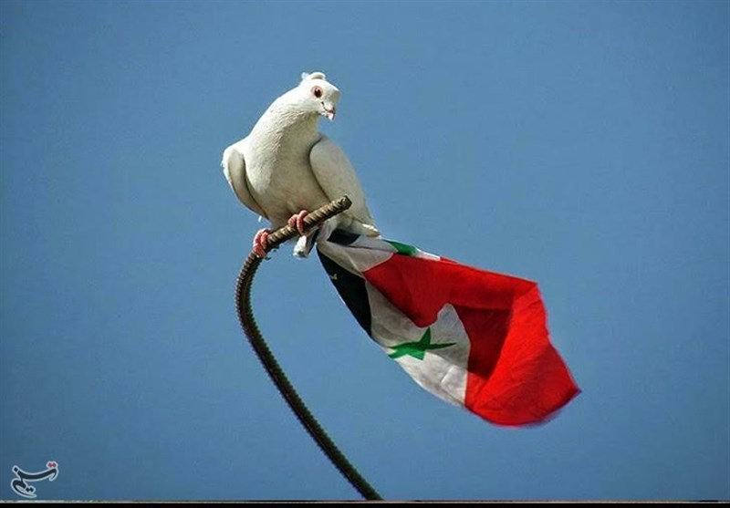 سوریه/آزادی القابون/19