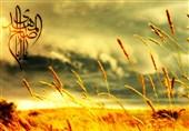 علائم آخرالزمان و راهکار امام علی(ع) در عبور از فتنههای آن