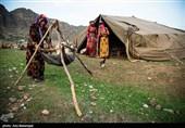 1.3 میلیارد تومان تسهیلات به عشایر کوهدشت پرداخت شد