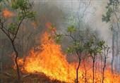 وقوع 282 مورد آتشسوزی جنگل در 27 استان کشور از ابتدای سال
