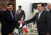 Third Parties Seeking to Spoil Iran-Pakistan Ties, Official Warns