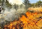 4 هزار مترمربع از باغات ناحیه غرب شهرکرد دچار حریق شد