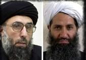 سخنان تند حکمتیار علیه طالبان و ائتلاف مخالفان اشرف غنی