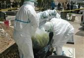 برگزاری نشست قرارگاه پدافند زیستی برای پیشگیری از تب کریمه کنگو