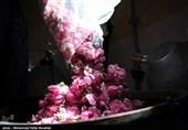 کرمان| صادرات 1600 هزار یورویی گلاب لالهزار به کشورهای اروپایی