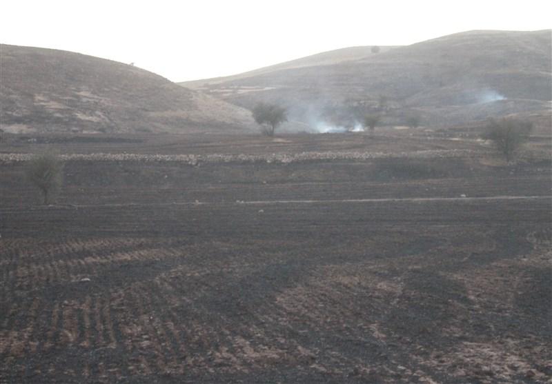 آتش سوزی در مزارع دشت کلاچوی کهگیلویه/ جنگلهای دشت مازه در خطر حریق گسترده