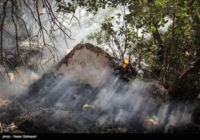 آتش سوزی در جنگل های ایوان