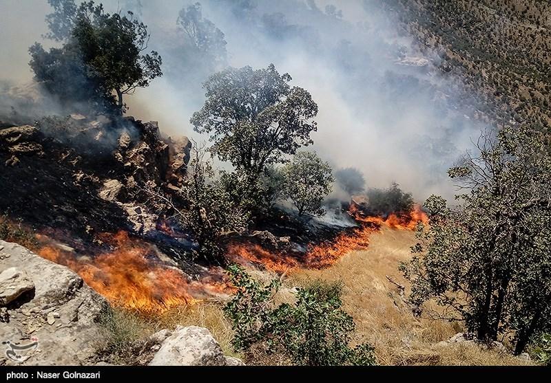 آتشسوزی منابع طبیعی در استان فارس 97 درصد کاهش یافت