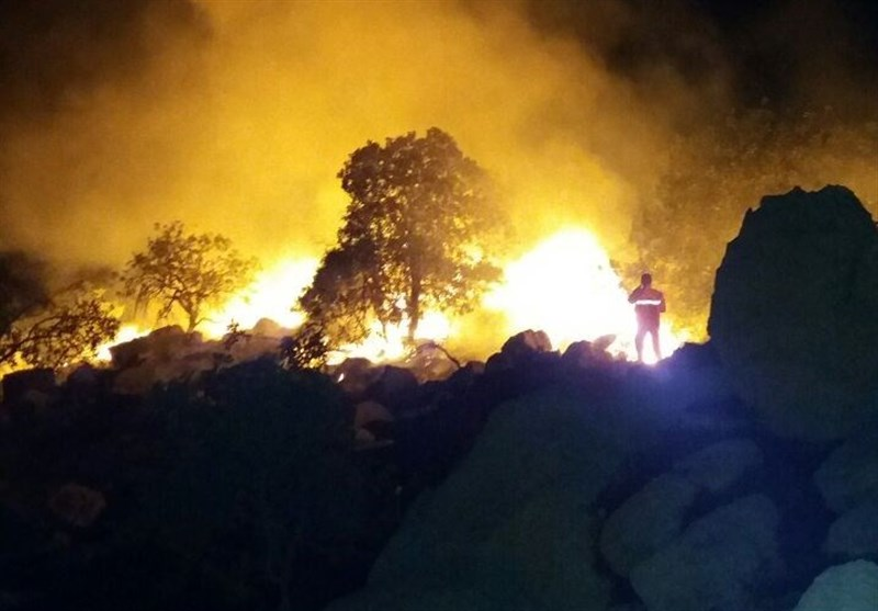 آتش روزانه بخش زیادی از جنگلهای کهگیلویه و بویراحمد را میسوزاند