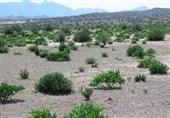 سازمان ملل با اجرای طرح ترسیب کربن در خراسان شمالی موافقت کرد