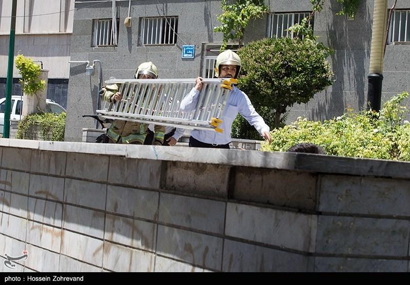 55 شهید و مجروح بر اثر حملات تروریستی تهران