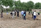 مهارتهای آموزشی بخش کشاورزی در مدارس روستایی گلستان آموزش داده میشود