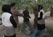 طرح ملی اعتلای بسیج همگام با کشاورز به امضا رسید