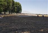 برداشت آتش از مزارع کوهدشت؛ آتشسوزی گندمزارهای روستای داوودرشید مهار شد